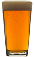 Exit 205 Session IPA