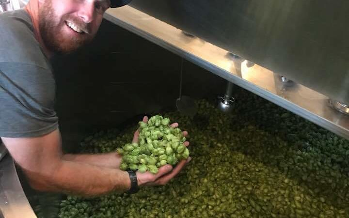 Wet Hop IPA Made With 100% Colorado Ingredients Now On Tap!