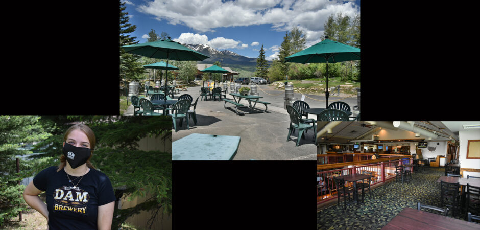 Choose Dine In, Patio, Dog Friendly Beer Garden